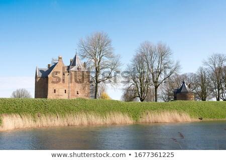 Holanda pueblo río naturaleza paisaje árboles Foto stock © ivonnewierink