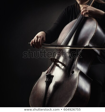 Beautiful female playing the cello Stock photo © sumners