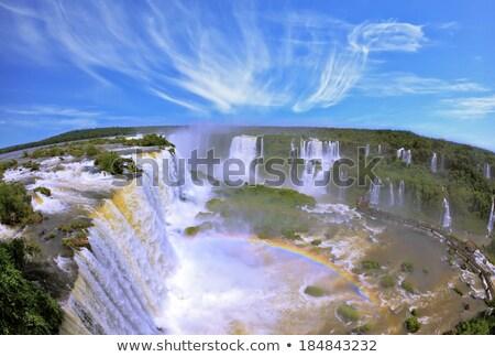 Névoa natureza rio selva ilha Foto stock © elxeneize