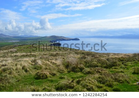 típico · irlandés · vista · naturaleza · paisaje · azul - foto stock © michaklootwijk