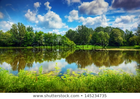 Polish summer rural landscape Stock photo © remik44992