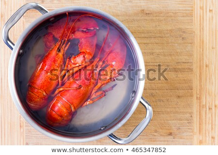 two red lobsters in a pot of boiling water stock photo © ozgur