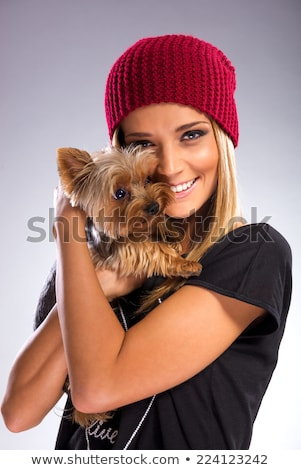 Yorkshire terrier in a grey photo studio Stock photo © vauvau