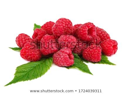 Vers frambozen bladeren witte vruchten Rood Stockfoto © Digifoodstock