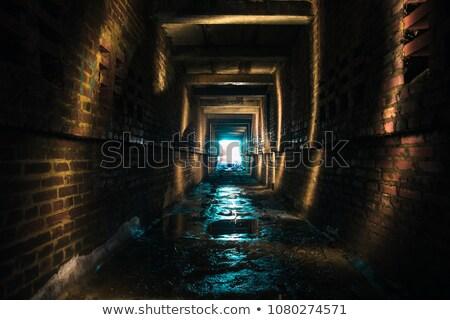 Pared túnel entrada ilustración edificio madera Foto stock © bluering