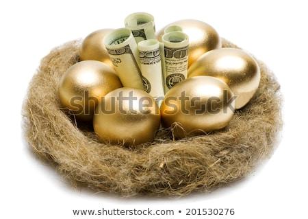 golden egg and dollars stock photo © devon