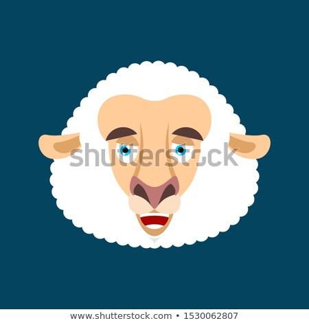 Birka boldog érzelem arc avatar haszonállat Stock fotó © popaukropa