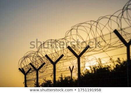 Dikenli tel gün batımı güneş arkasında çit manzara Stok fotoğraf © bdspn