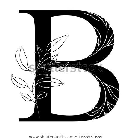 Alfabe örnek mektup eğitim yatak iç Stok fotoğraf © colematt