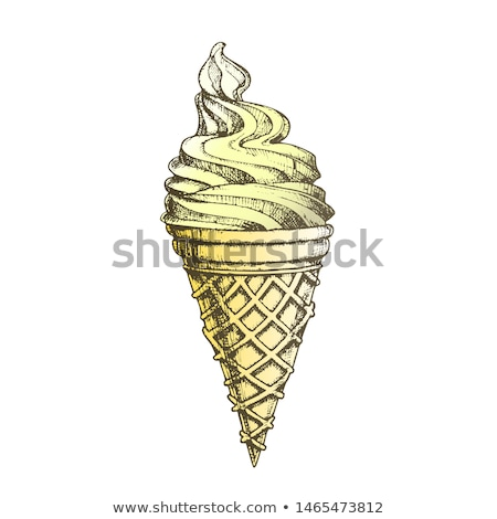 Color Ice Cream In Waffle Cornet Snow Cone Ink Vector Stock photo © pikepicture