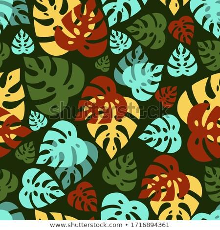 Vektor végtelenített szalvéta virágok absztrakt minta Stock fotó © leedsn