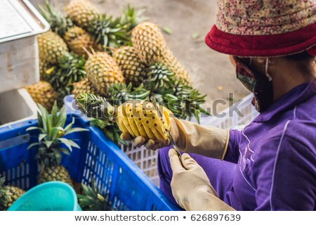 A Vietnamese woman is cleaning pineapple in the Vietnamese market. Asian cuisine concept Stock photo © galitskaya