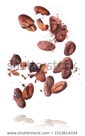Cocoa beans levitate on a white background Stock photo © butenkow