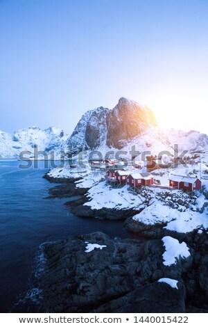 島々 ノルウェーの 海 冬 ノルウェー 雪 ストックフォト © dmitry_rukhlenko