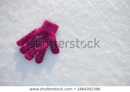 dziewczyna · śniegu · szczęśliwy · górskich - zdjęcia stock © zurijeta