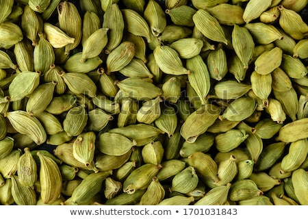 Cardamomo natureza caminho semente grão macro Foto stock © leeser