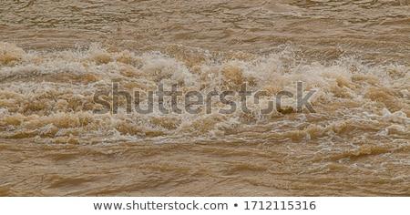 Sáros víz gyors folyó absztrakt természet Stock fotó © IMaster