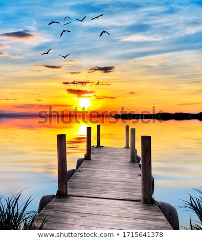 summer lake sunrise stock photo © jsnover