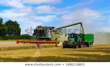 Stock photo: combine harvester reaps the corn