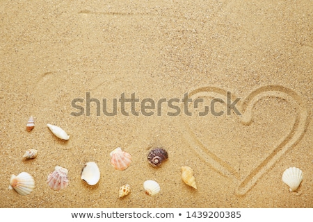 heart drawn on sand stock photo © cozyta