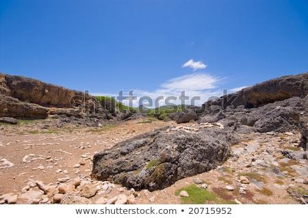 ストックフォト: 公園 · 海 · 自然 · 青 · 岩 · 白