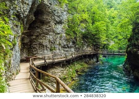 bridge through the river in park Stock photo © dengess