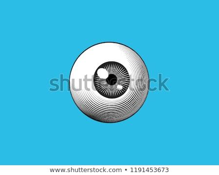 göz · küresi · casus · eps · şeffaflık · karakter - stok fotoğraf © carbouval
