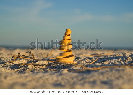 seashells on sand with glass ball with blue sky stock photo © 808isgreat