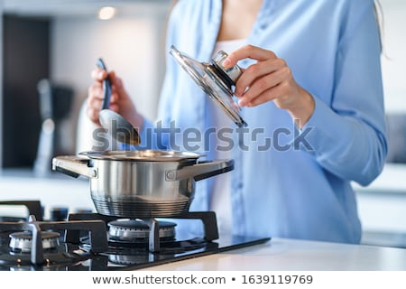 Stove. Housewife prepares meals. Food ingredients in smoke stock photo © gromovataya