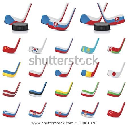 Hóquei cores Cazaquistão bandeira esportes Foto stock © perysty