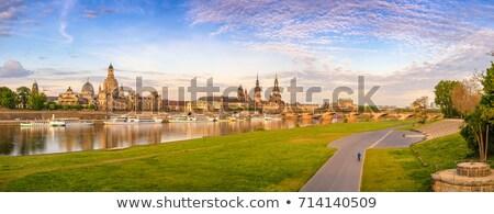 Drezno panorama panoramę słońca dzień Niemcy Zdjęcia stock © joyr