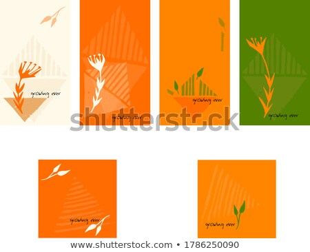 Díszes vektor virágmintás sablon űr szöveg Stock fotó © vitek38