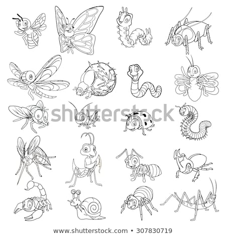 scorpion cartoon character line art stock photo © cteconsulting