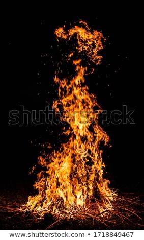 grande · fogueira · ardente · madeira · natureza · laranja - foto stock © mikko