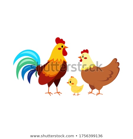 Cock with chick Stock photo © zzve