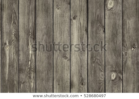 Textured Barnwood stock photo © luminastock