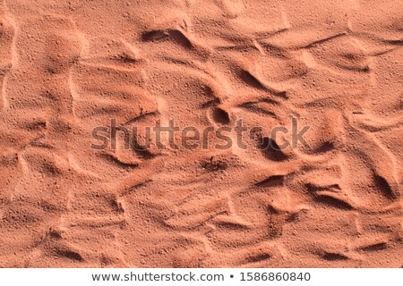 sandstone surface stock photo © zerbor
