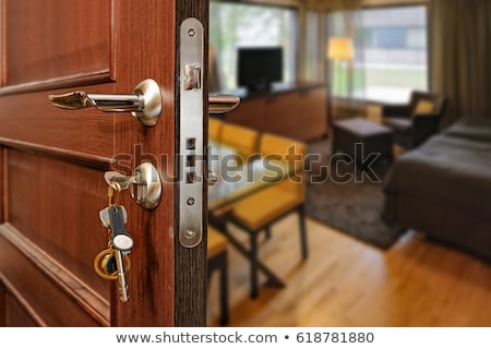 Open Door to Home Ownership Stock photo © iqoncept