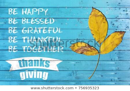 Happy Thankgsgiving stock photo © sonofpromise