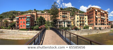 Panoramic view on Recco-popular touristic resort. Stock photo © rglinsky77