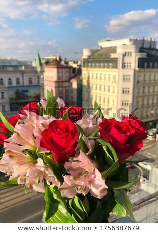 Prague vue belle bouquet fleurs toits Photo stock © tannjuska