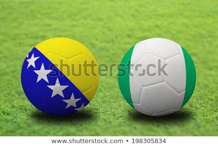 Nigeria · vs · groep · fase · wedstrijd · tegenover - stockfoto © smocker03