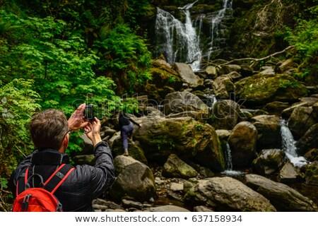 ストックフォト: 滝 · 公園 · 水 · 風景 · 山 · 夏