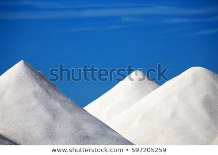 Deniz tuzu yalıtılmış beyaz mükemmel daire arka plan Stok fotoğraf © aetb