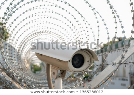 Technológia börtön internet függőség áldozat emberi Stock fotó © Lightsource