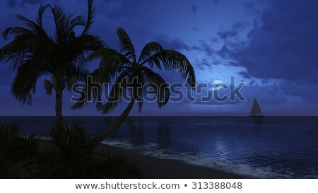 Tropical Beach at Night Moonlight, with Sailboat. Stock photo © ankarb