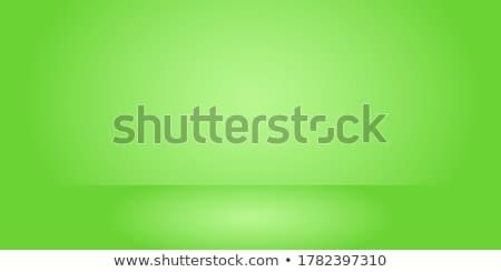 czarno · białe · poduszkę · meble · kolor · biały · wzór - zdjęcia stock © beaubelle