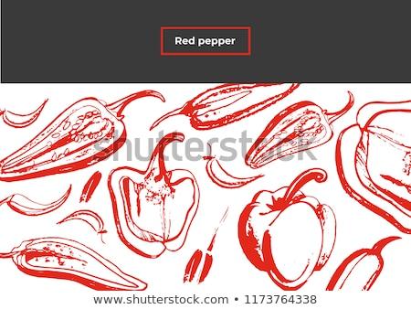 赤 唐辛子 水彩画 紙 食品 手 ストックフォト © artibelka