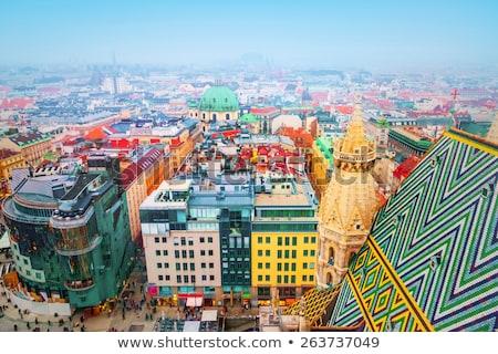 Telhado Viena ver catedral Áustria textura Foto stock © joyr