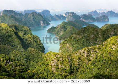 Вьетнам · лодках · пейзаж · азиатских · тропические · Азии - Сток-фото © smithore